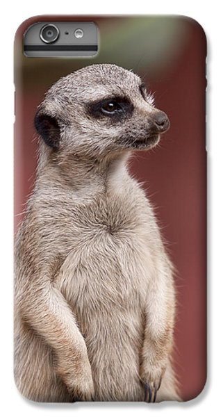 The Sentry IPhone 6 Plus Case by Michelle Wrighton