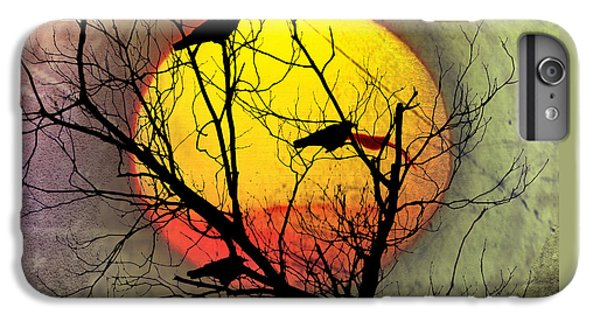 Three Blackbirds IPhone 6 Plus Case by Bill Cannon