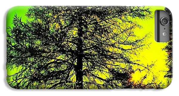 Cool iPhone 6 Plus Case - Tree by Luisa Azzolini