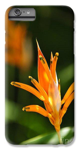 Tropical Orange Heliconia Flower IPhone 6 Plus Case by Elena Elisseeva