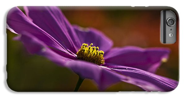 Turn Your Face To The Sun IPhone 6 Plus Case