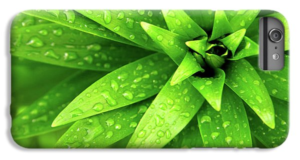 Green iPhone 6 Plus Case - Wet Foliage by Carlos Caetano