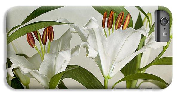 Lily iPhone 6 Plus Case - White Lilies by Nailia Schwarz