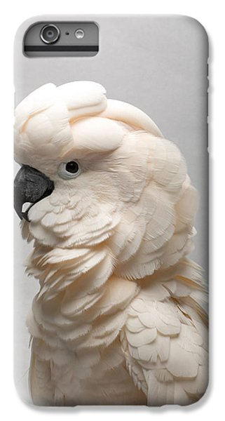 Cockatoo iPhone 6 Plus Case - A Salmon-crested Cockatoo by Joel Sartore