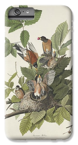 American Robin IPhone 6 Plus Case by Rob Dreyer