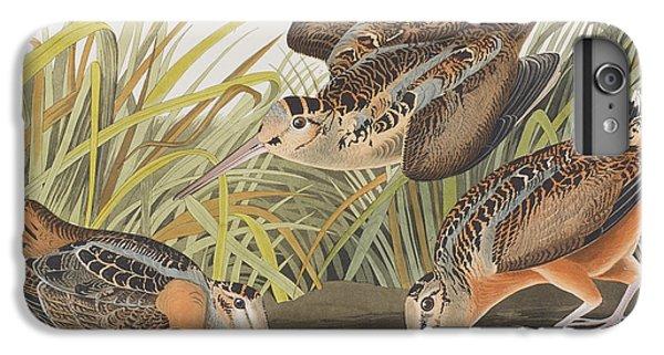 American Woodcock IPhone 6 Plus Case by John James Audubon