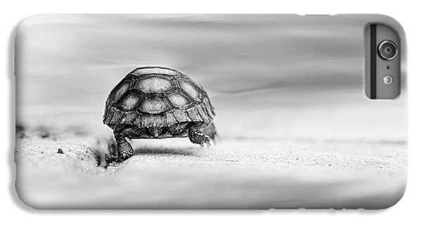Tortoise iPhone 6 Plus Case - Big Big World by Laura Fasulo