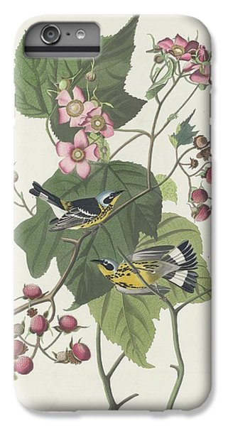 Black And Yellow Warbler IPhone 6 Plus Case by Rob Dreyer