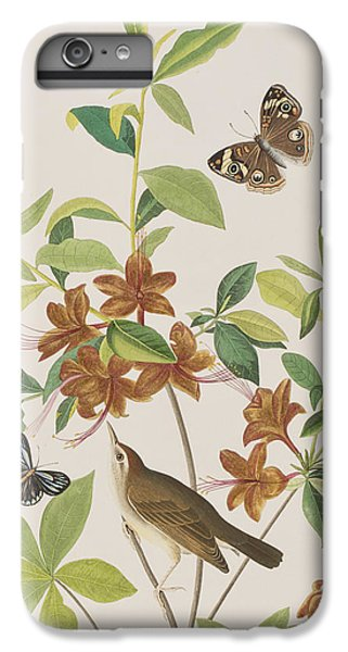 Brown Headed Worm Eating Warbler IPhone 6 Plus Case by John James Audubon