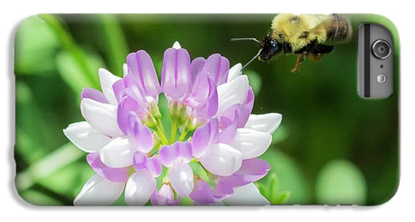 Bumble Bee Pollinating A Flower IPhone 6 Plus Case by Ricky L Jones
