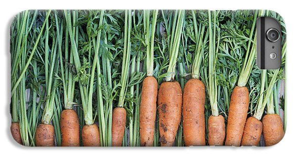 Carrots IPhone 6 Plus Case by Tim Gainey