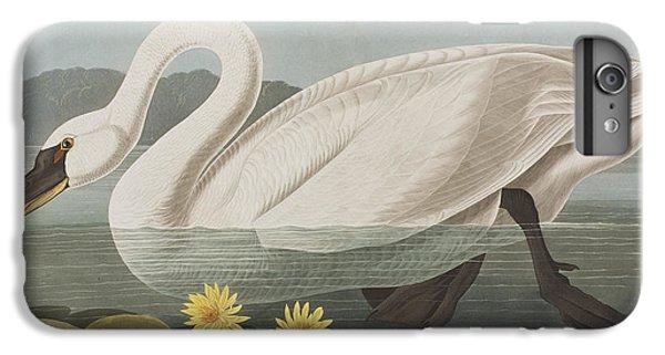 Common American Swan IPhone 6 Plus Case by John James Audubon