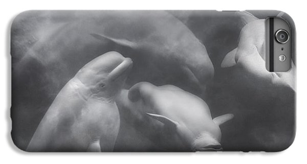 Dancing Belugas  IPhone 6 Plus Case by Betsy Knapp