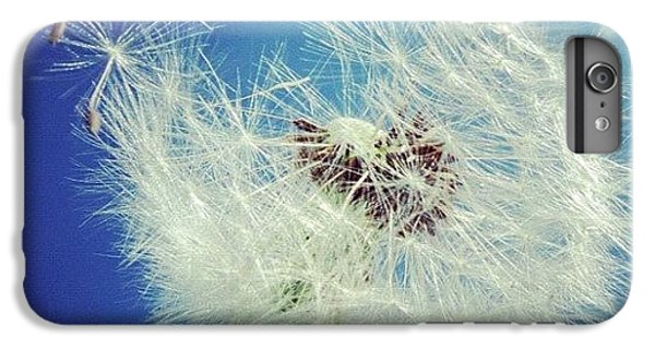 Detail iPhone 6 Plus Case - Dandelion And Blue Sky by Matthias Hauser