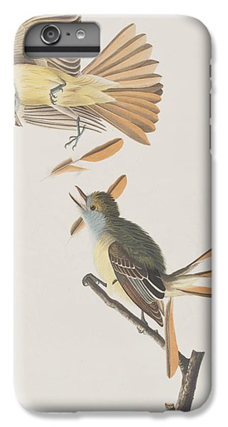 Great Crested Flycatcher IPhone 6 Plus Case by John James Audubon