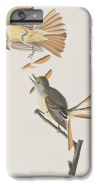 Great Crested Flycatcher IPhone 6 Plus Case