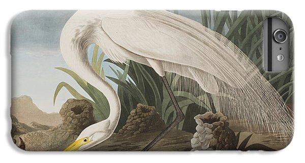 Great Egret IPhone 6 Plus Case by John James Audubon