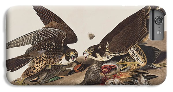 Great-footed Hawk IPhone 6 Plus Case by John James Audubon