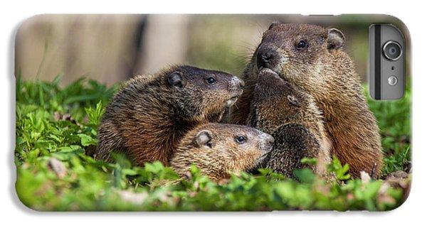Happy Family IPhone 6 Plus Case by Mircea Costina Photography