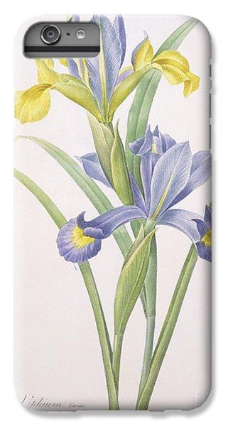 Iris Xiphium IPhone 6 Plus Case by Pierre Joseph Redoute