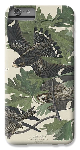 Night Hawk IPhone 6 Plus Case by Dreyer Wildlife Print Collections