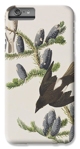 Olive Sided Flycatcher IPhone 6 Plus Case