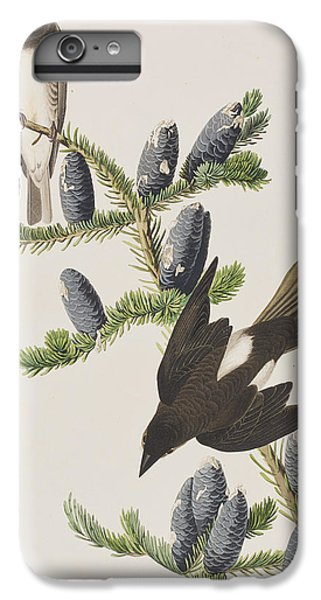 Olive Sided Flycatcher IPhone 6 Plus Case by John James Audubon