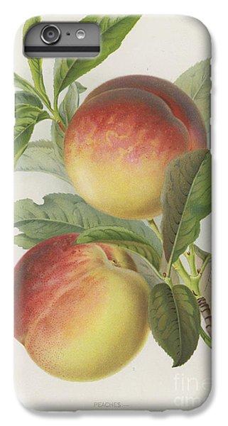 Peaches IPhone 6 Plus Case