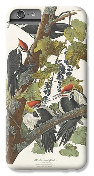 Pileated Woodpecker IPhone 6 Plus Case by Dreyer Wildlife Print Collections