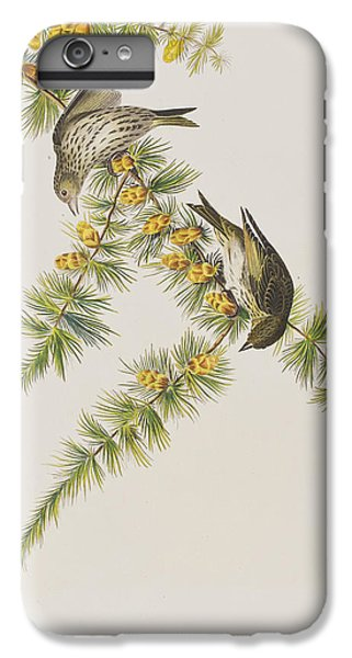 Pine Finch IPhone 6 Plus Case by John James Audubon