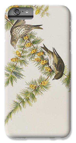 Pine Finch IPhone 6 Plus Case by John James Audubon