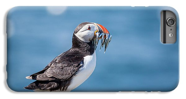 Puffin iPhone 6 Plus Case - Puffin With Fish For Tea by Anita Nicholson