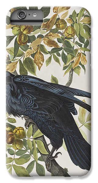 Raven IPhone 6 Plus Case by John James Audubon
