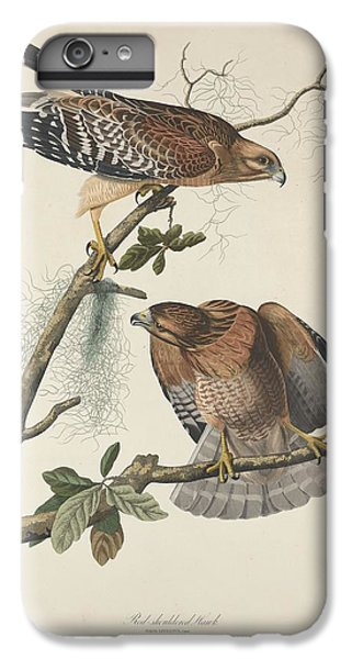 Red Shouldered Hawk IPhone 6 Plus Case by Dreyer Wildlife Print Collections