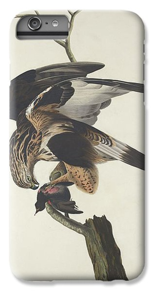 Rough Legged Falcon IPhone 6 Plus Case by Rob Dreyer