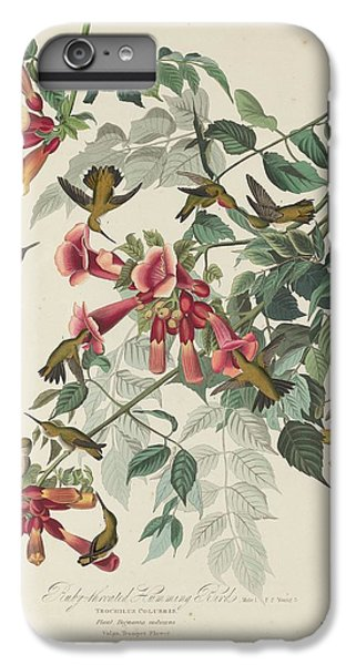 Ruby-throated Hummingbird IPhone 6 Plus Case by Dreyer Wildlife Print Collections