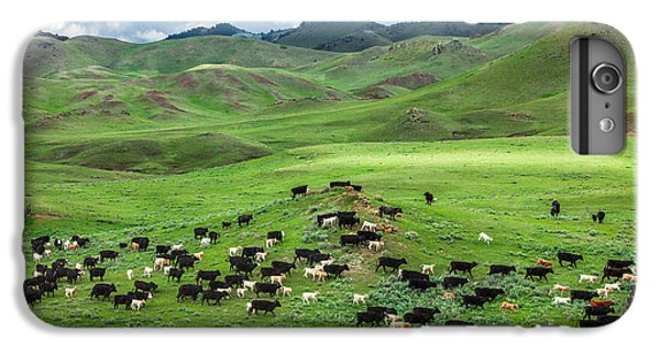 Cow iPhone 6 Plus Case - Salt And Pepper Pasture by Todd Klassy