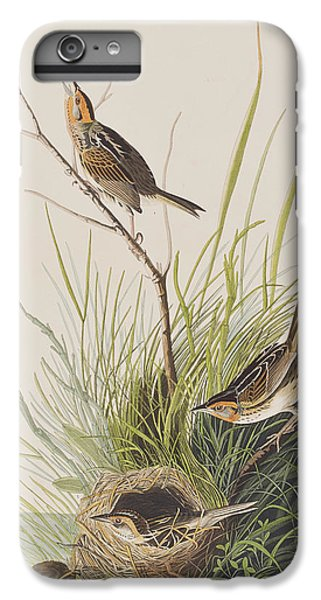 Sharp Tailed Finch IPhone 6 Plus Case by John James Audubon