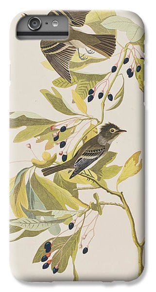 Small Green Crested Flycatcher IPhone 6 Plus Case by John James Audubon