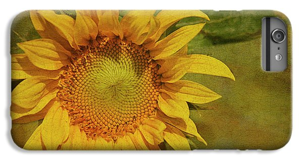 Sunflower iPhone 6 Plus Case - Sunflower by Cindi Ressler