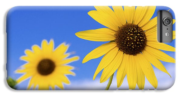 Sunflower iPhone 6 Plus Case - Sunshine by Chad Dutson