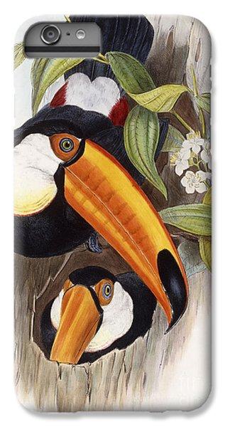 Toucan IPhone 6 Plus Case
