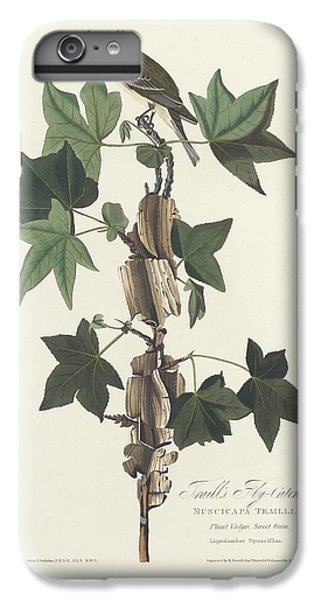 Traill's Flycatcher IPhone 6 Plus Case