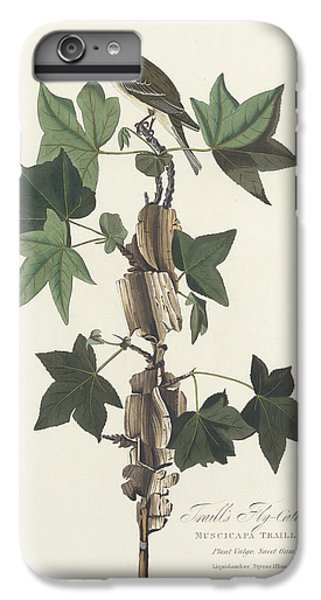 Traill's Flycatcher IPhone 6 Plus Case by John James Audubon