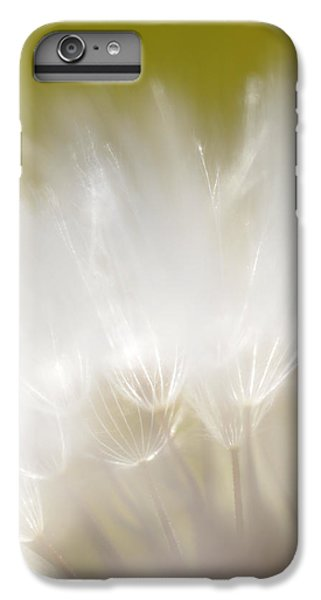 White Blossom 1 IPhone 6 Plus Case by Dubi Roman