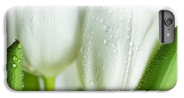 Tulip iPhone 6 Plus Case - White Tulips by Nailia Schwarz
