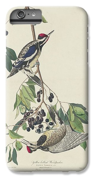 Yellow-bellied Woodpecker IPhone 6 Plus Case by Dreyer Wildlife Print Collections