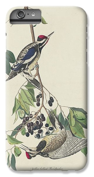 Yellow-bellied Woodpecker IPhone 6 Plus Case by John James Audubon