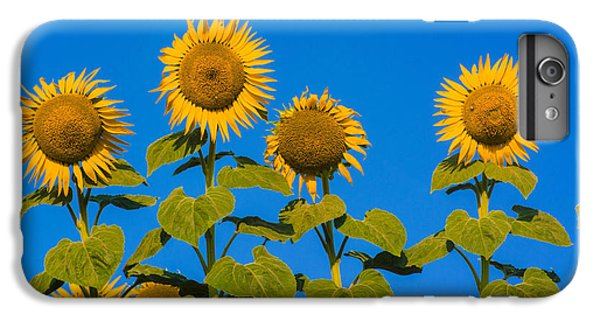 Sunflower iPhone 6 Plus Case - Field Of Sunflowers by Bernard Jaubert
