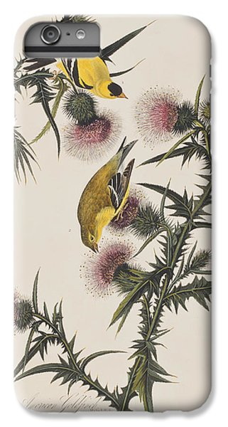 American Goldfinch IPhone 6 Plus Case by John James Audubon